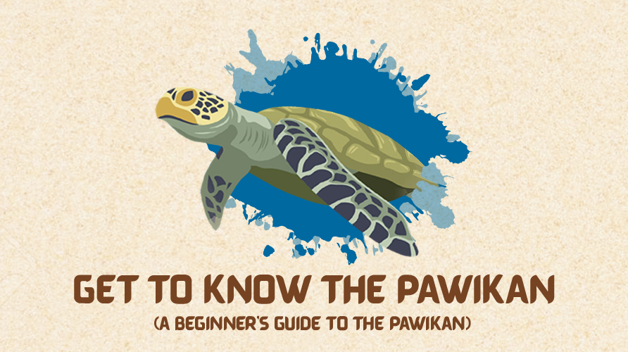 Get to know the Pawikan